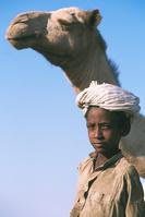 スーダン サハラ ラクダ使い