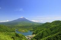 山梨県 新緑の精進湖と富士山