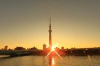 東京都 浅草からスカイツリーの朝
