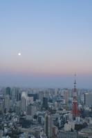 東京タワーと周辺のビル群と月 夕景