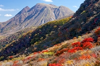 大分県 紅葉の沓掛山山腹と三俣山