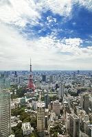 東京 街並みと東京タワー