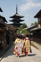 京都府 八坂の塔と舞妓