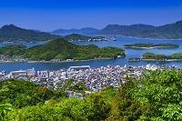 広島県 因島公園より春の瀬戸内海