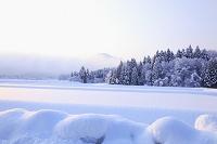 新潟県 白山 一面の雪景色