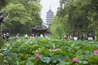 中国 蘇州 拙政園