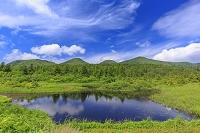 青森県 睡蓮沼と八甲田山