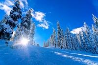 長野県 晴天のスキー場