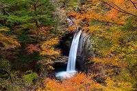 徳島県 大釜の滝
