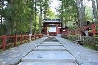 栃木県 日光二荒山神社参道と神門