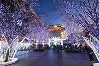 福岡県 福岡市博多区 博多シティ クリスマスイルミネーション2017