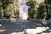 東京都 愛宕神社 出世の石段(男坂)と大鳥居