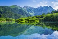 長野県 新緑の大正池と穂高連峰