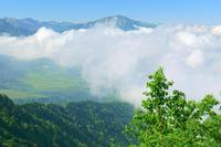 富山県 大日岳から弥陀ケ原と薬師岳