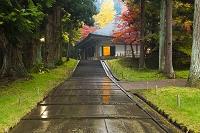岩手県 雨に濡れる中尊寺金色堂