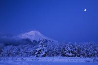 山梨県 雪の里より富士山と月朝景
