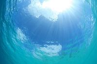 パラオ 水中から見た青空