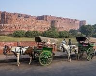 インド アグラ城 城壁