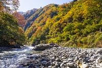 新潟県 清津峡の紅葉