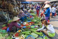 ベトナム ホイアン 市場