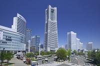 神奈川県 みなとみらい地区