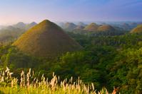 フィリピン ボホール島 チョコレート・ヒルズ