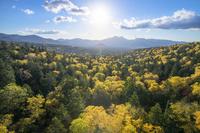 北海道 紅葉の三国峠