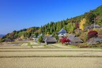 岡山県 紅葉の八塔寺ふるさと村(町並み保存地区)