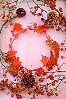 紅葉と実もの