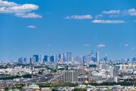 東京都 稲城市 新宿高層ビルと街並み