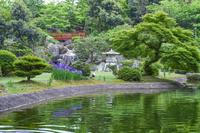 新潟県 日本庭園