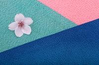 桜の花と3色の縮緬