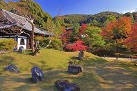 京都府 紅葉の高台寺 方丈より臥龍廊と霊屋