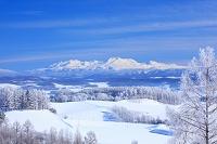 北海道 富良野 大雪山と丘陵地帯