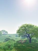 丘と木陰のラウンジャー