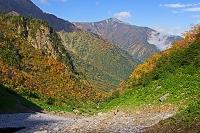 長野県 針ノ木雪渓と爺ケ岳遠望