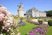 フランス シュノンソー城庭園と城館