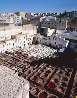 モロッコ フェズ タンネリ地区