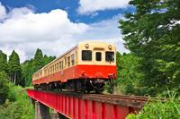 千葉県 小湊鉄道の列車