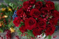 クリスマスに赤いバラ