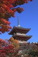 京都府 京都市  清水寺 三重塔