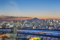 東京都 都心のビル群と富士山