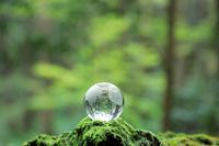 新緑の森に置かれたクリスタル地球儀