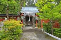 京都府 新緑の赤山禅院 大きな珠数