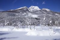 新潟県 雪の妙高高原