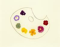 草花で描いたパレット