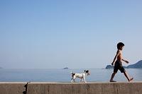 海岸を歩く少年と犬