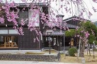 岐阜県 飛騨の匠文化館