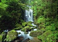 和歌山県 桑ノ木の滝