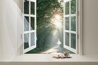 朝の光が窓辺に差し込む
